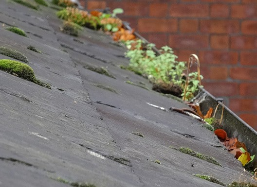 DPR-Roofing-Leeds-Gutter-Clearance