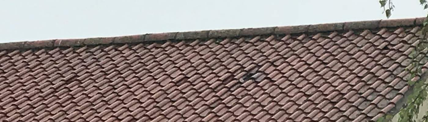 Is Your Commercial Roofing Posing a Safety Risk?